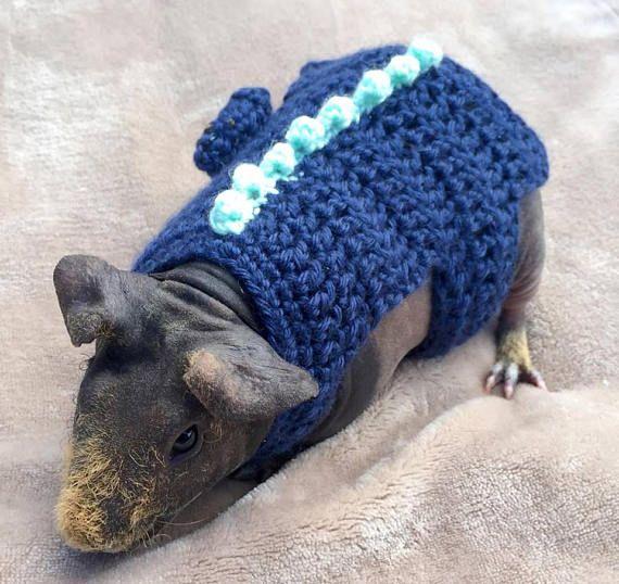 Guinea Pig Costume Dinosaur Costume Alligator Costume