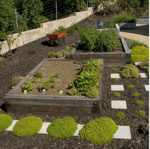 Nice GardenGardens Ideas, Landscape Architecture, Raised Beds, Gardens Design Ideas, Mid Century, Vegetables Gardens, Garden Design Ideas, Landscapes Architecture, Veggies Gardens