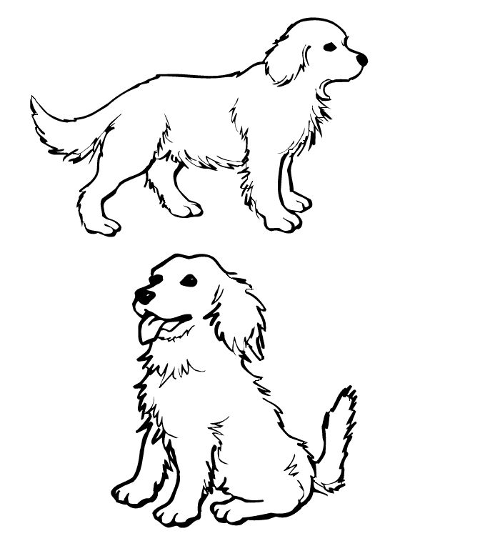 dog coloring pages for girls dog coloring pages for kids retriever puppygolden