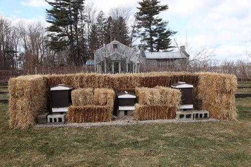 Keep bees warm with haybales