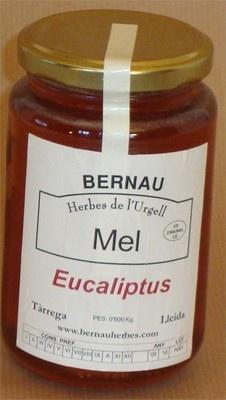Miel de Eucalipto 500g $5.62