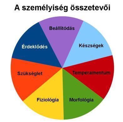 3. Olvasd el a személyiség összetevőiről szóló magyarázatokat és jegyezd meg az ábra segítségével az összetevőket!