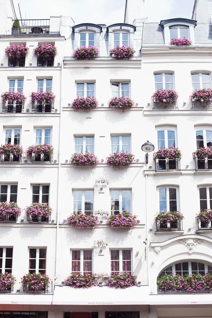 Paris window boxes with pretty pink flowers // photo by Carin Olsson #blooms #travel #france