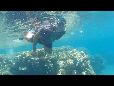 Více Než Nejlepších Nápadů Na Pinterestu Na Téma Diving Videos - An alien world lurks beneath in this creepy cave diving video