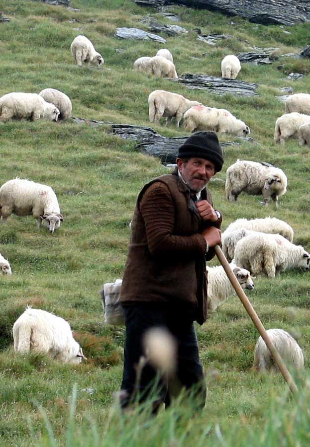 Among generic values that Romanians may have, one value that stands out is being hardworking. The amount of work a Romanian citizen puts in to reach a certain goal can be remarkable. This is especially true for rural areas, as represented in this picture.
