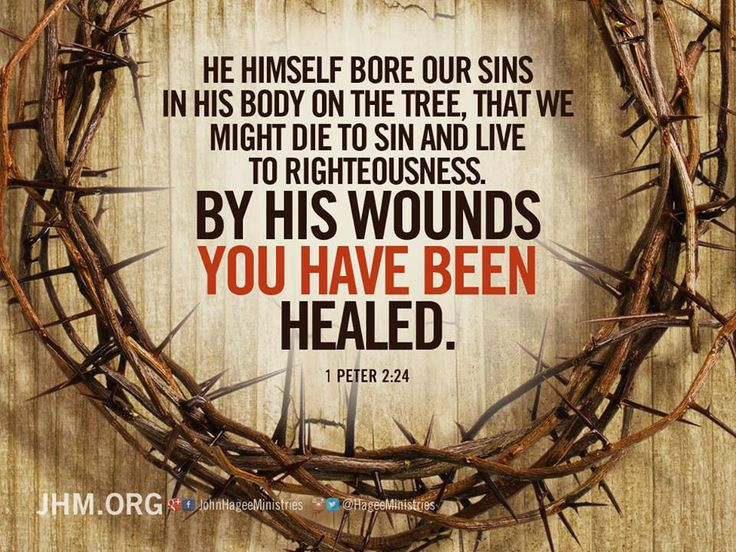 By His Wounds You are Healed: Book Review