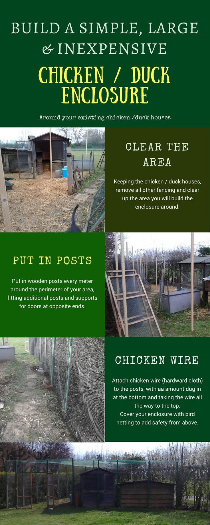 best 25 duck enclosure ideas on pinterest duck pond duck pens
