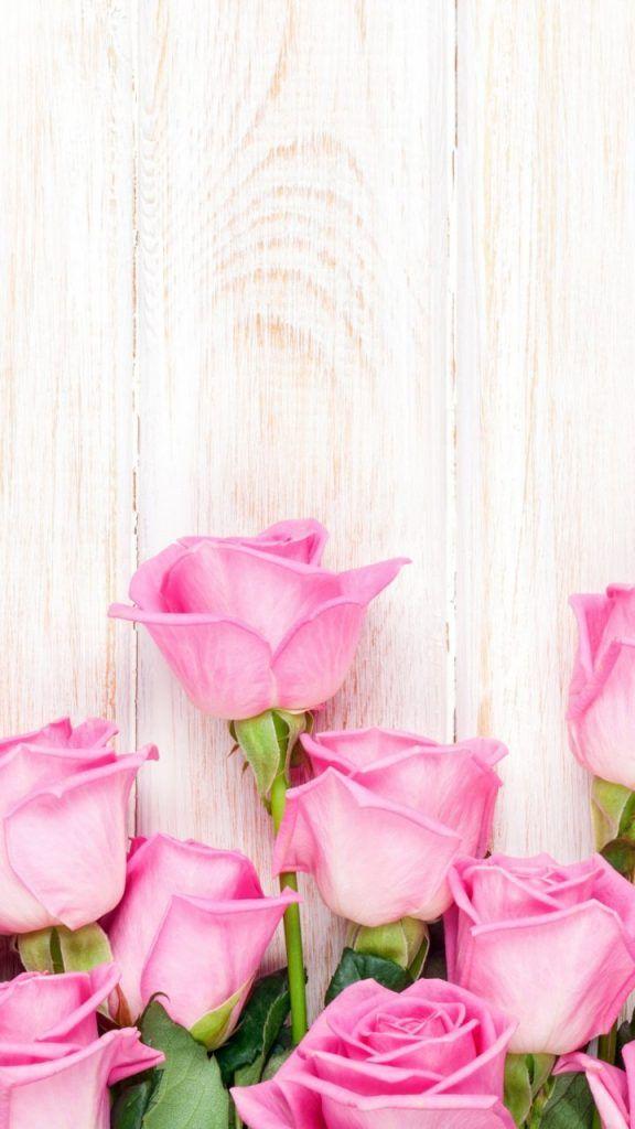 Flores Hermosas Para Fondo De Pantalla Fondos De Pantalla Alegres Fondos De Pantalla Wallpapers Fondos De Pantalla Tumblr