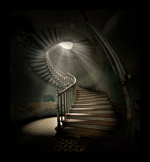 beautiful stairs and lighting in a neglected venue: Photographers, Photos, Spirals Staircases, Spirals Stairs, Trav'Lin Lights, Stairways To Heavens, Architecture Photography, Shadows, Poland
