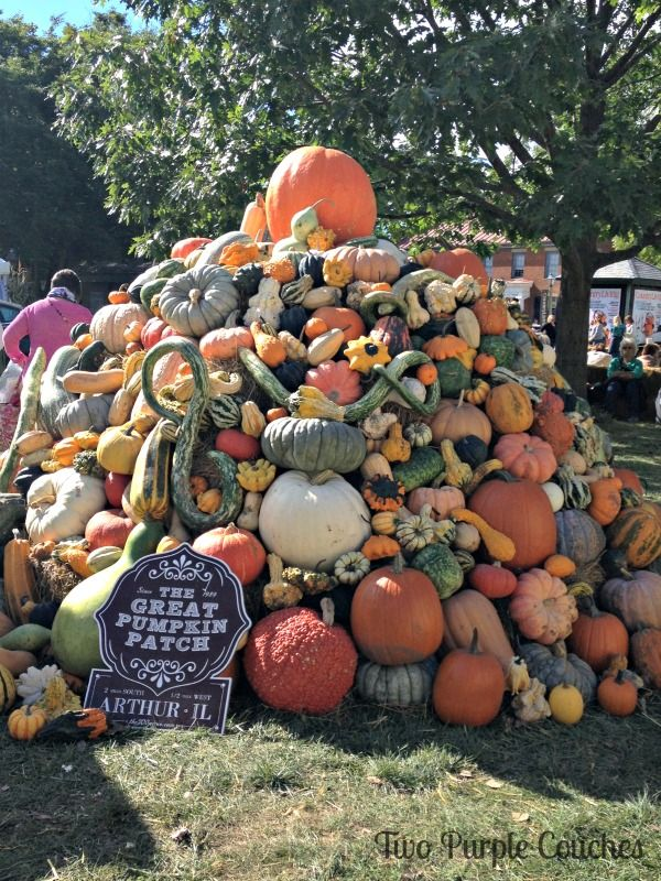 Incredible giant pumpkin patch at the Country Living Fair in Columbus Ohio. via www.twopurplecouches.com #CLFair #Fall #CountryLiving #pumpkins