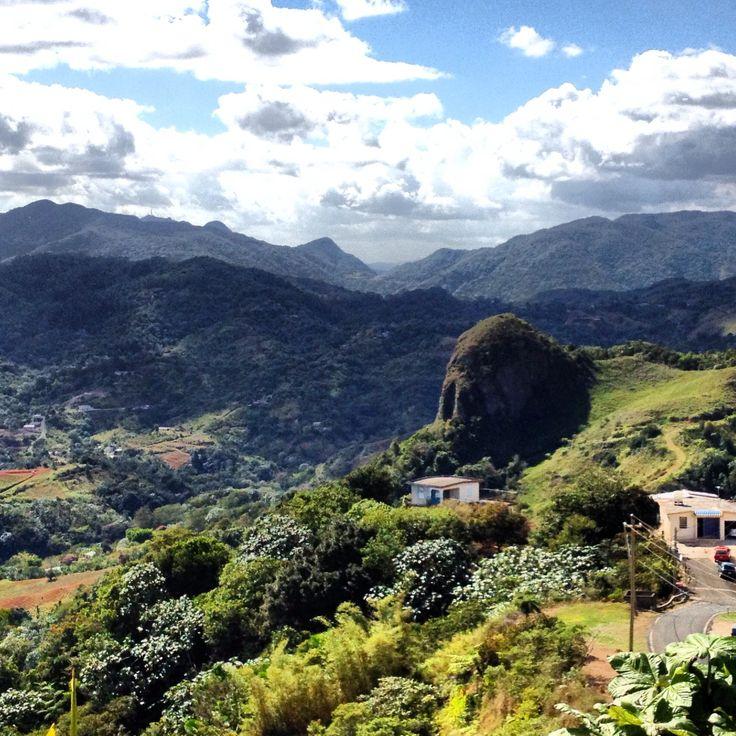 Peon De Francia, Orocovis Puerto Rico Wwwcombatebeach -8358