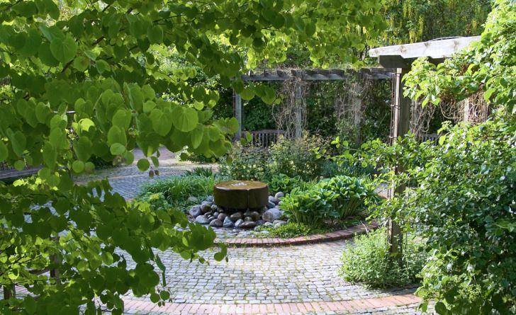 Så enkelt och så vackert! Både blicken och själen blir fångad. Vatten som sakta sipprar fram ur en kvarnsten bildar tillsammans med vackra bladväxter ett svalkande, formskönt blickfång i Fridegårdsparken i Enköping. Till vänster i förgrunden syns en katsuras, Cercidiphyllum japonicum, delikata lövverk.