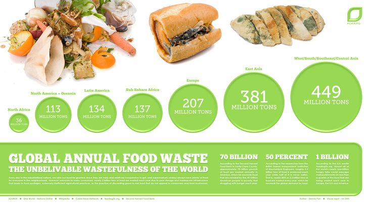 ROTTEN! Global Annual Food Waste   Visual.ly