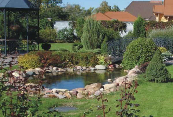 Feng Shui Backyard Pond : Feng Shui Home with Pets, Step 1