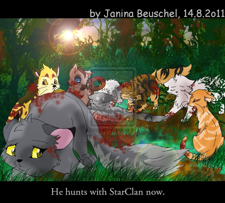 Warriors Cats Into The Wild Movie: Natalie's Stuff~Warrior Cats
