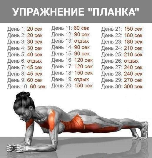 """30-ДНЕВНАЯ ПРОГРАММА УПРАЖНЕНИЯ """"ПЛАНКА"""""""
