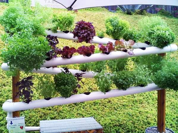 rain gutter garden system hydroponic peas in rain gutters vertical garden. Black Bedroom Furniture Sets. Home Design Ideas