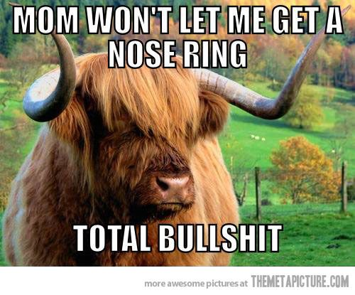 Angsty Teen Cow