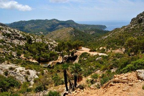 Excursión de Sant Telm a la Trapa |  Mallorca
