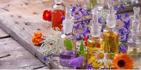 Alecrim, aroeira, arruda, alfazema, anis estrelado, guiné, elevante e folhas de eucalipto. As propriedades das ervas usadas em banhos de descarrego.