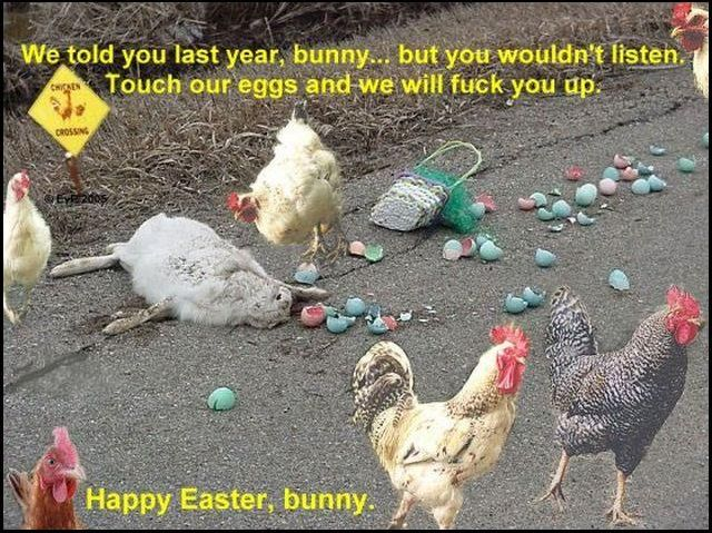 Funny Easter Pictures, Images, Photos 640X479