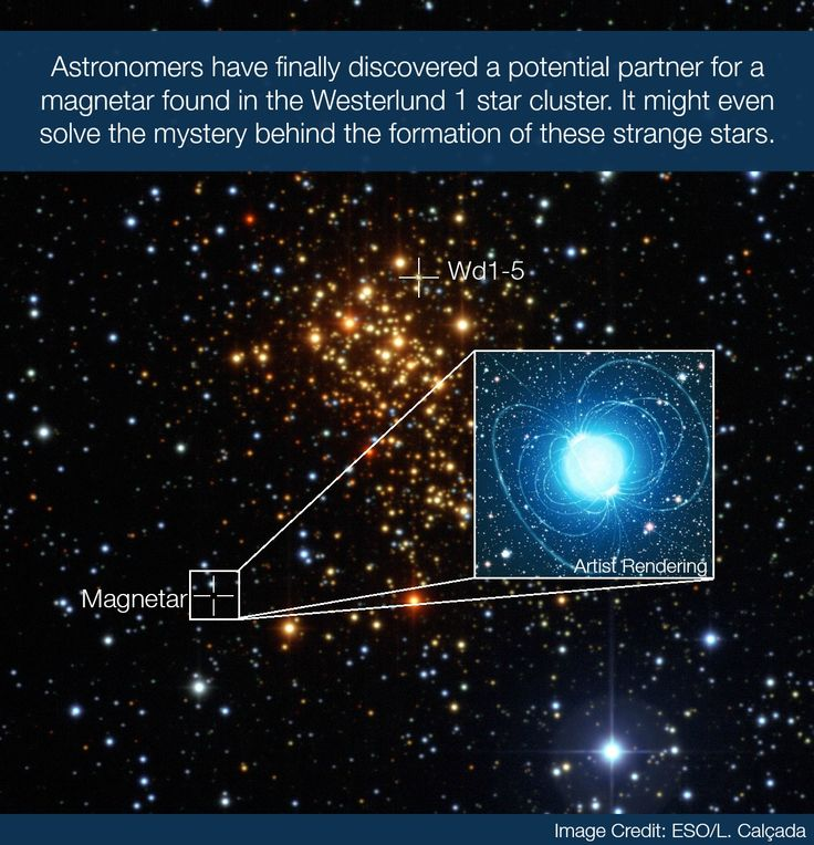 Have Scientists Finally Unveiled the Mystery Behind How ...