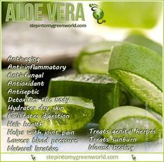 Aloe Vera and Emu Oil: Exceptional Ingredients for Firmer and Younger-looking Skin