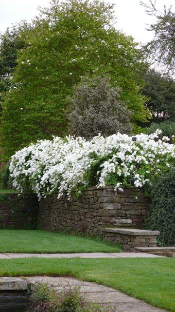 .like the stone wall