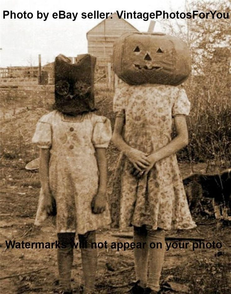Antique/Vintage Early 1900s Weird/Creepy/Scary Pumpkin Head/Owl Costume Photo