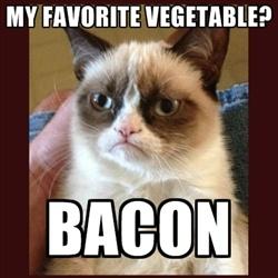 got to love Grumpy Cat...