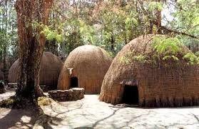 Zulu huts.....original zulu housing. Thatch/Grass-made housing, helps with the heat