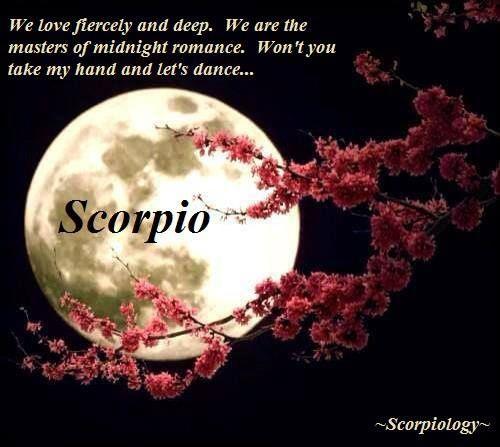 true scorpio | So true | Scorpio's.....