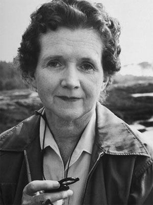 Rachel Carson    1907 - 1964  BIOLOGIST & ENVIRONMENTAL ACTIVIST    Her book Silent Spring, which warned of the perils of pesticide use, sparked a grassroots green movement and spurred the overhauling of our national policy on pesticides. Her work has saved countless lives — furred, feathered, finned, and human.