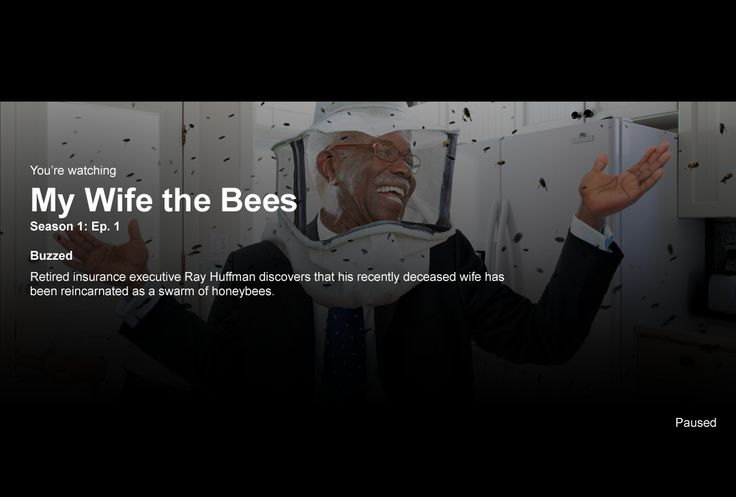 My Wife the Bees