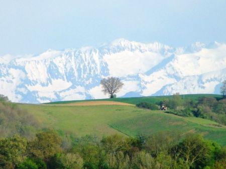 Gers. Les Pyrénées.