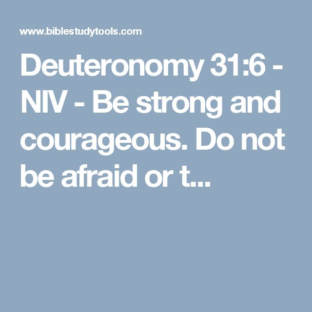 Deuteronomy 31:6 - NIV - Be strong and courageous. Do not be afraid or t...