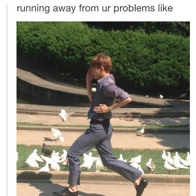 normal people noticed lay first but I noticed that there is one pigeon in the middle of all the doves