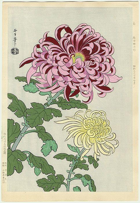 Original Benji Asada (1899 - 1984) Japanese Woodblock Print Chrysanthemums, 1949
