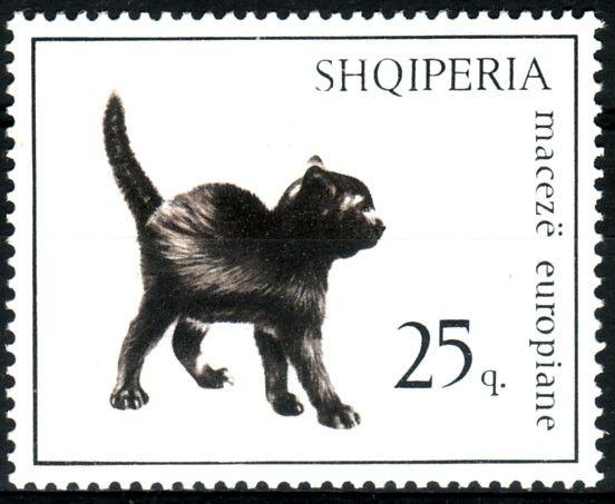Postage stamp - Albania - 1966