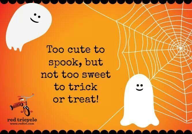 Halloween Saying Cute Onesie Sayings Pinterest