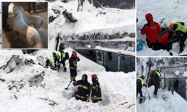 Eight people have been found alive beneath an avalanche that hit the village of Farindola in the Italian Alps on Wednesday just hours after rescuers said they would not give up hope 🌸 🌹 ᘡℓvᘠ □☆□ ❉ღϠ □☆□ ₡ღ✻↞❁✦彡●⊱❊⊰✦❁ ڿڰۣ❁ ℓα-ℓα-ℓα вσηηє νιє ♡༺✿༻♡·✳︎· ❀‿ ❀ ·✳︎· FR DEC 20, 2017 ✨ gυяυ ✤ॐ ✧⚜✧ ❦♥⭐ ♢∘❃ ♦♡❊ нανє α ηι¢є ∂αу ❊ღ༺✿༻✨♥♫ ~*~ ♆❤ 🌸♪♕✫❁✦⊱❊⊰●彡✦❁↠ ஜℓvஜ 🌹