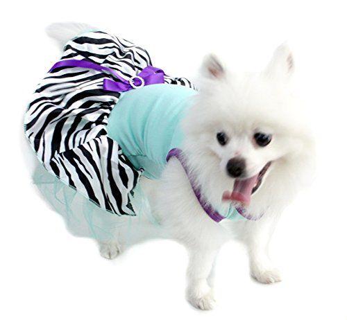 Pet Supply Light Blue Cotton Top Zebra Tutu Dog Dress Ani... https://www.amazon.com/dp/B01DP7QR1A/ref=cm_sw_r_pi_dp_x_HklCybKQSM0DD