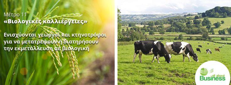 Έναρξη του προγράμματος Μέτρο 11 «Βιολογικές Καλλιέργειες». Η υποβολή αιτήσεων πραγματοποιείται από 24-01-2017 έως 22-02-2017.