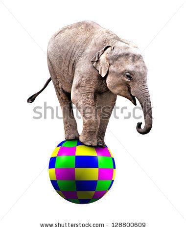 Vintage Circus Elephant On A Ball A baby circus elephant