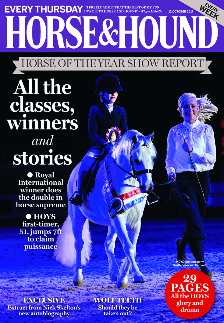 Don't miss our full report from the Horse of the Year Show in this week's issue (12 October) — on sale now!
