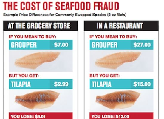 Fish Prices Dupe Customers Scammed by 'Bait and Switch' Seafood