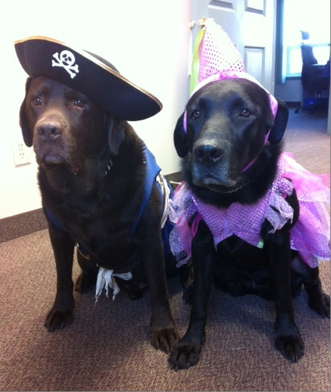 Princess Molly and Pirate Bentley
