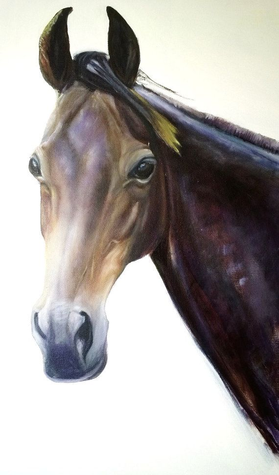 Print of Dark Bay Anglo Arab Horse from original oil by Equuspaint