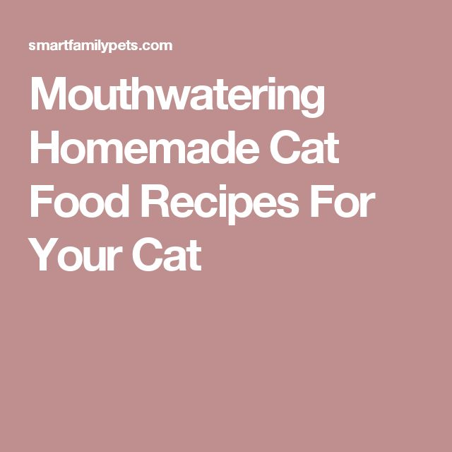 Mouthwatering Homemade Cat Food Recipes For Your Cat