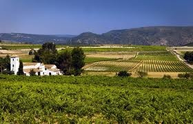 #valenciantuscany a wonderful region in #inland #valencia producing #wine since more than 20 centuries ago.